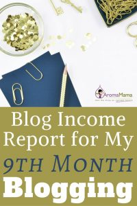 Blog Income Report for My Ninth Month of Blogging