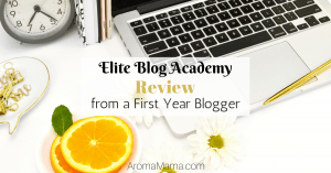 Elite Blog Academy Review from a First Year Blogger