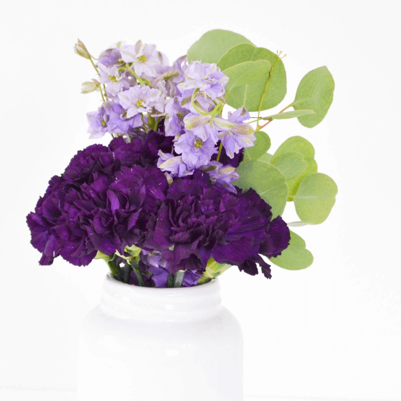 Purple Flowers in White Vase