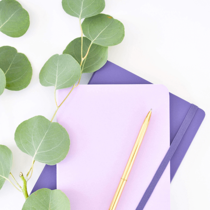 Purple Notebooks with Greenery