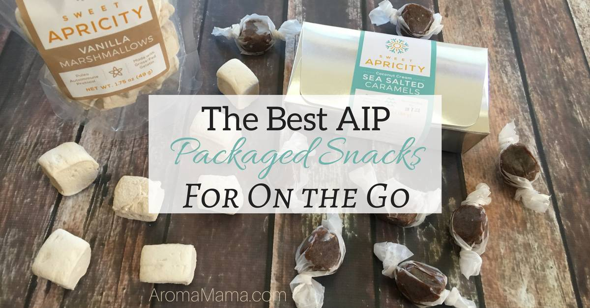 The Best AIP Packaged Snacks for On the Go