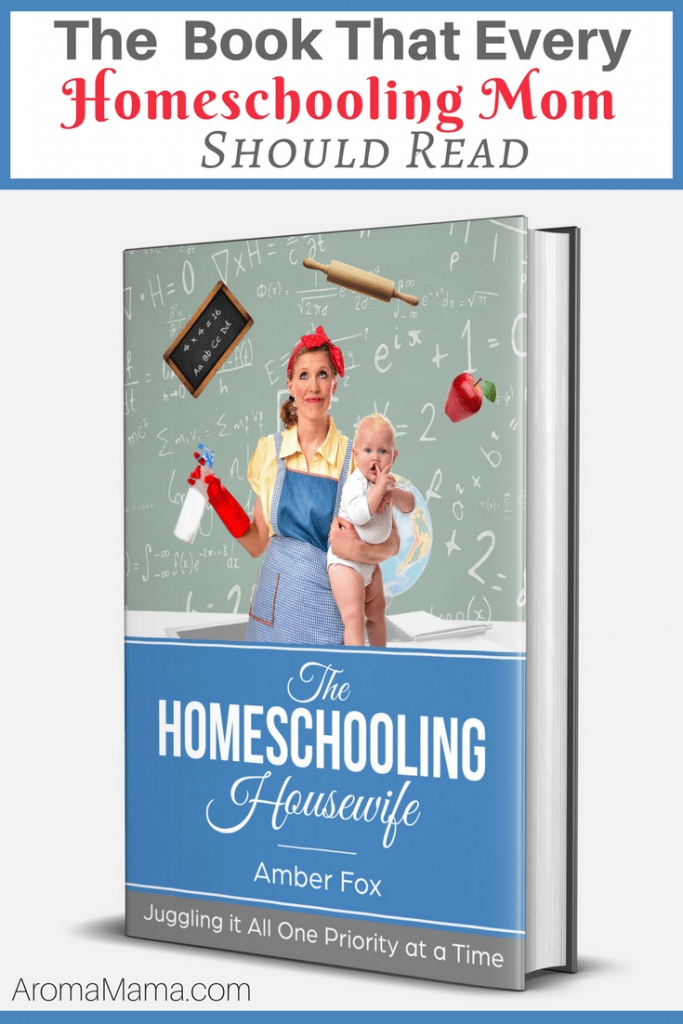 The Book That Every Homeschooling Mom Should Read